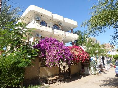 Holiday Apartment in Al Luxor (Qina) or holiday homes and vacation rentals