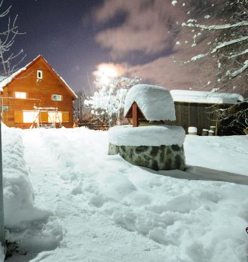 Chalet in Vistisoara (Brasov) or holiday homes and vacation rentals