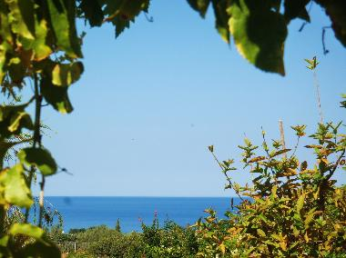 Holiday Apartment in Pafos Peyia (Paphos) or holiday homes and vacation rentals