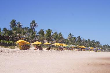 Holiday House in Imbassai (Bahia) or holiday homes and vacation rentals