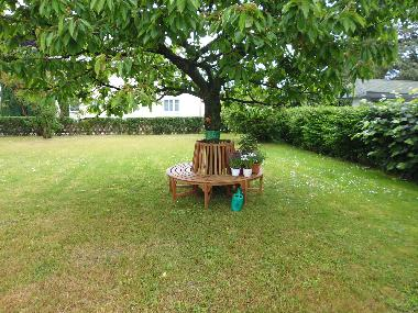 Holiday Apartment in Zinnowitz (Ostsee-Inseln) or holiday homes and vacation rentals