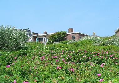 Holiday House in Bergen aan Zee (Noord-Holland) or holiday homes and vacation rentals