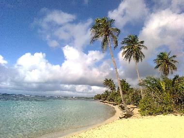 Holiday Apartment in sainte anne (Guadeloupe) or holiday homes and vacation rentals