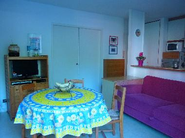 Holiday House in ARCACHON (Gironde) or holiday homes and vacation rentals