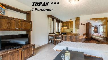 Holiday House in Saas-Fee (Saas-Fee) or holiday homes and vacation rentals