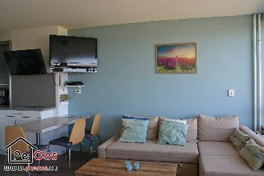 Holiday Apartment in Noordwijk  (Zuid-Holland) or holiday homes and vacation rentals